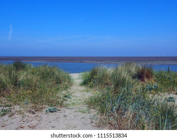 grass covered sand dune on the banks of the river wyre near fleetwood lancashire with calm blue water and sunlit sky