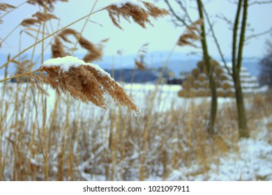 Grass covered in snow with haystack in the background