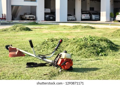 Grass cutter / brush cutter placing on grass field.