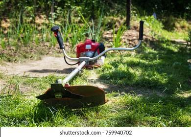 Grass cutter / brush cutter for trimming overgrown grass