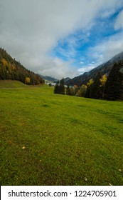 Grass field in the austrian alps