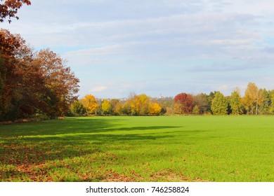 Grass field with autumn trees and village Hosin. Czech landscape