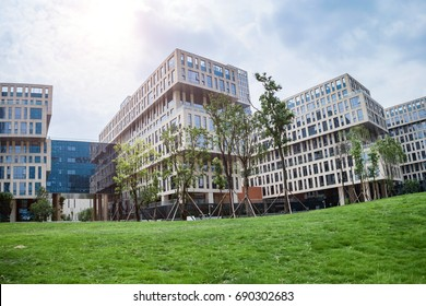 grass field in front of modern office building