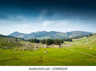 Grass field and mountain against sky