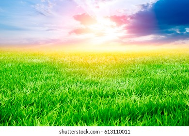 Grass field with sunset and sunrise dramatic sky. Beautiful Agricultural landscape in the summer season.