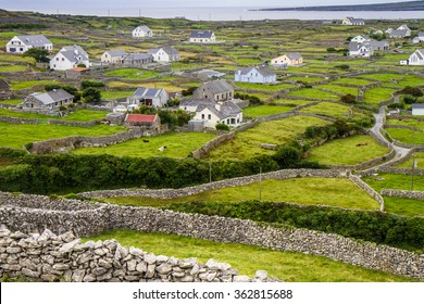 Grass fields and dry stone walls on Inis Meain, Aran Islands, County Galway, Connaught, Ireland