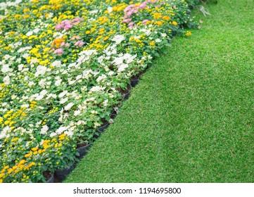 Grass and flower garden