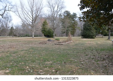 grass with garden with brown plants in the winter