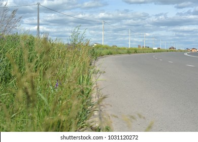 Grass growing along the highway, against a blue sky with clouds