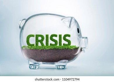 Grass growing in the shape of the word crisis, inside a transparent piggy bank.