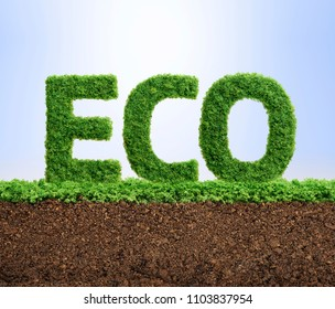Grass growing in the shape of the word ECO.