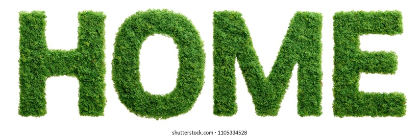 Grass growing in the shape of the word home isolated.