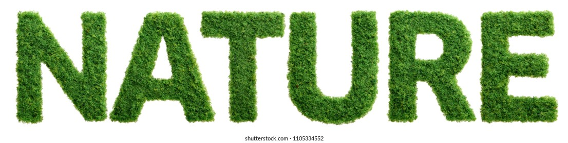 Grass growing in the shape of the word nature isolated.