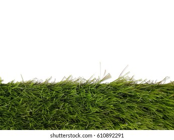 grass isolated on white background on with clipping path.