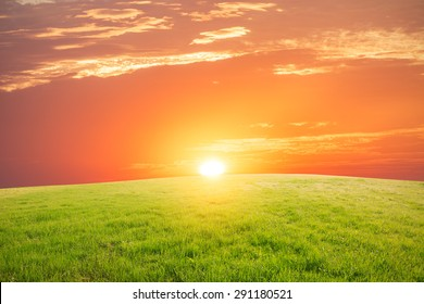 Grass land  at the sunset