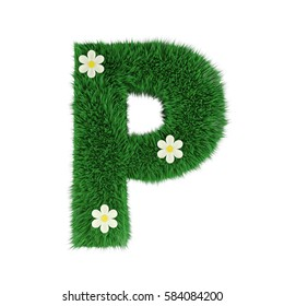 grass letter P isolated on white. 3d rendering
