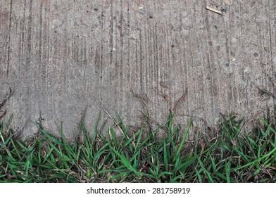 grass on cement background