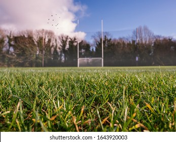 Grass on a pitch in focus, Irish national sport goalpost out of focus in the background. Concept football, rugby, hurling and camogie training.