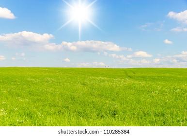 Grass Outdoor Sunlit Landscape