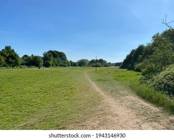 Grass parkland with sun scorch marks in the height of a summers day.