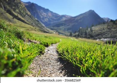 A grass path to the mountains