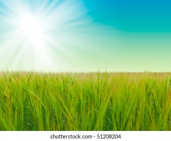 grass and perfect blue sky