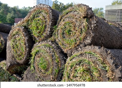 Grass rolls are piled in careless stacks, sod rolls close up