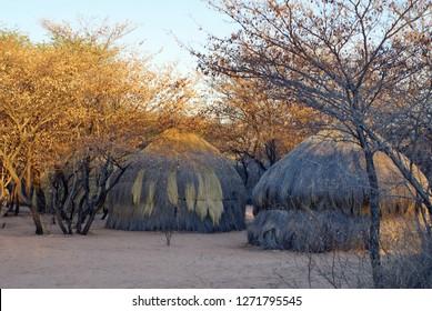 Grass rondavels at a Khoisan camp area near Ghanzi, Botswana