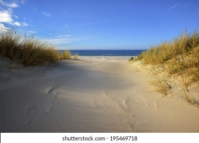 Grass sand dune beach sea view white clouds sunny blue sky, Leba, Baltic Sea, Poland