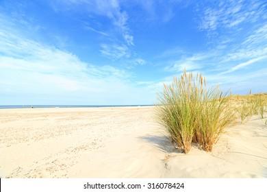 Grass sand dune beach sea view, Leba, Baltic Sea, Poland