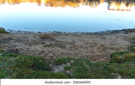 The grass and the sandy bank of the river at dawn