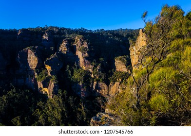 Grass and shrubbery growing on craggy cliffs at sunset in the Blue Mountains National Park in Katoomba, Australia.