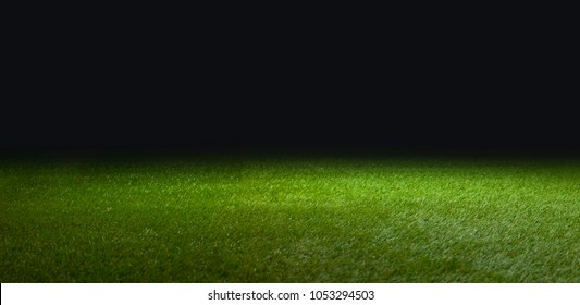 grass for soccer