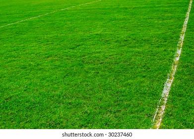 grass sport pitch background