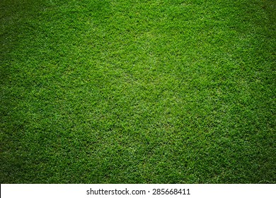 grass of stadium background