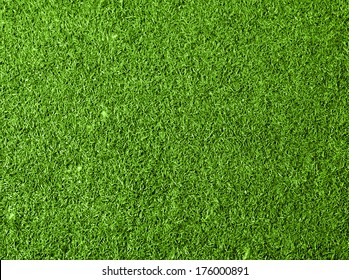 Grass texture background. Top view photo