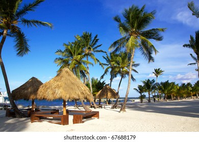 Grass umbrellas  on caribbean beach with palms