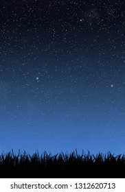 Grass under the night sky with stars