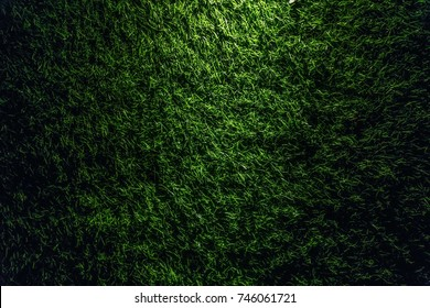 Grass wall for use as background ready for add text or graphic in advertise