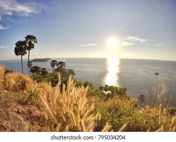 The grass when sunset at Promthep Cape (Laem Promthep) - The viewpoint of phuket island, Thailand