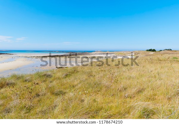 Grass and wildflowers stretch in  to the distance alongside the Plage Sainte-Marguerite at low tide.