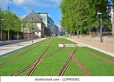 Grassed tramway track - new tramway line