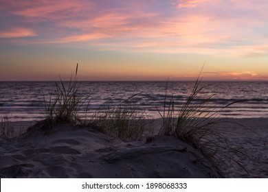 Grasses can be seen growing in the sand dunes with a beautiful sunset in the background, the shallow depth of field is used to give a soft, dreamlike mood