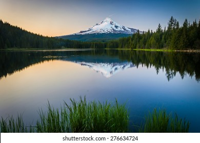Grasses and Mount Hood reflecting in Trillium Lake at sunset, in Mount Hood National Forest, Oregon.