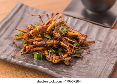 Grasshopper edible fried insects crispy with pandan on the brown plate with tea, on wooden background, Close-up, Horizontal image