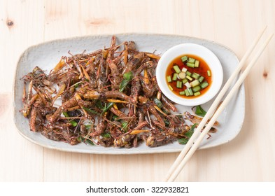 Grasshopper fried in dish on wood background