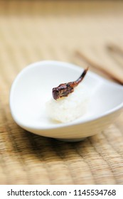 Grasshoppers, also known as chapulines, are often compared to sushi as the next extreme food trend