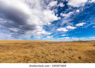 grassland in autumn in Tibet China