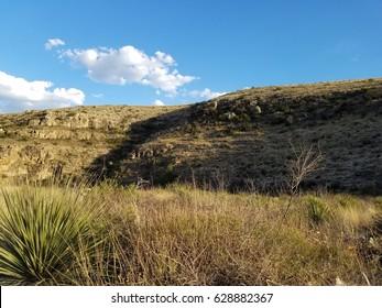 Grassland Blue