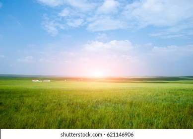 Grassland blue sky and white clouds. Morning and sunset. Inner Mongolia, western China